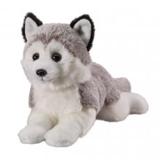 Husky 18cm, lying