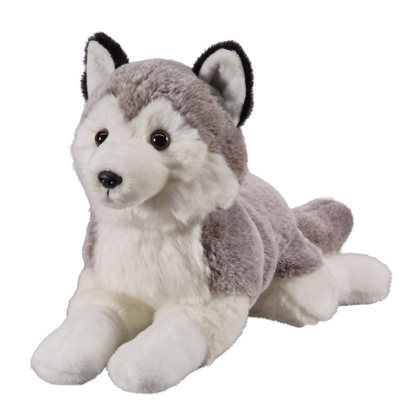 Husky 25cm, lying
