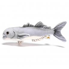 Bluefish 25cm