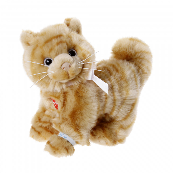 Domestic Cat brown 25cm, standing